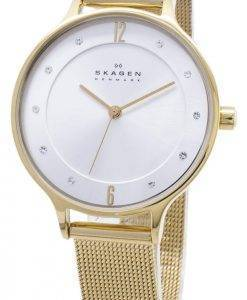 Skagen Anita maillage 15x6mm cristallisé SKW2150 Women Watch