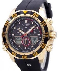 Citizen Eco-Drive Chronograph Promaster World Time JR4046-03E JR4046 montre homme